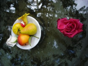 fructe floare